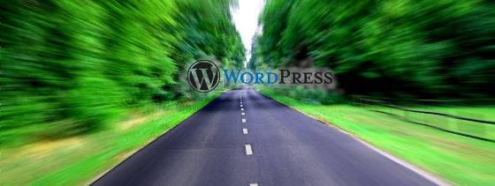Otimizar seu WordPress