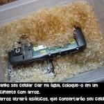 Como consertar seu celular molhado?